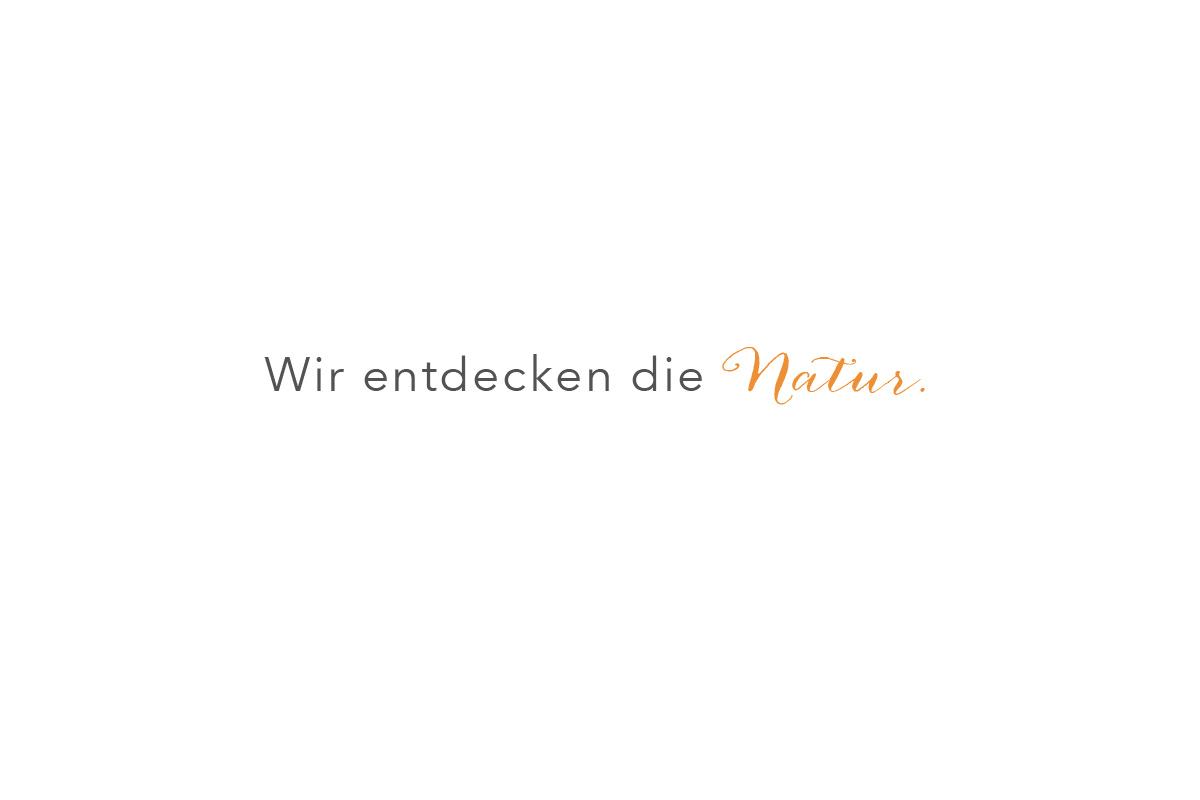 Monte_zitate-4