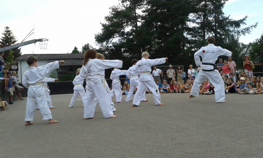 Taekwondo_